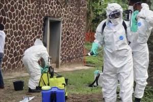 New Ebola deaths in Congo