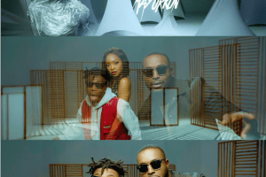 DJ Neptune - Tear Rubber Featuring Mayorkun [Video]