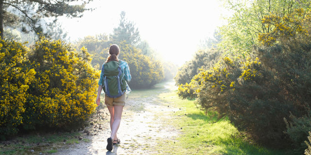 Woman with back pack walking through woodland.