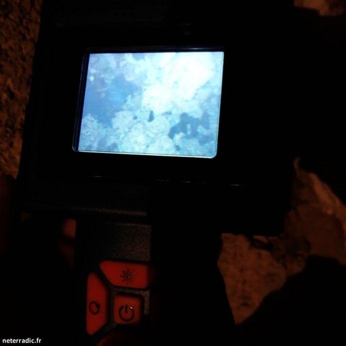 passage de rongeur par caméra endoscopique