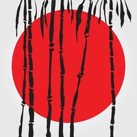 Get access to Japanese Netflix