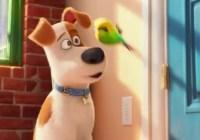 The Secret Life of Pets on Netflix