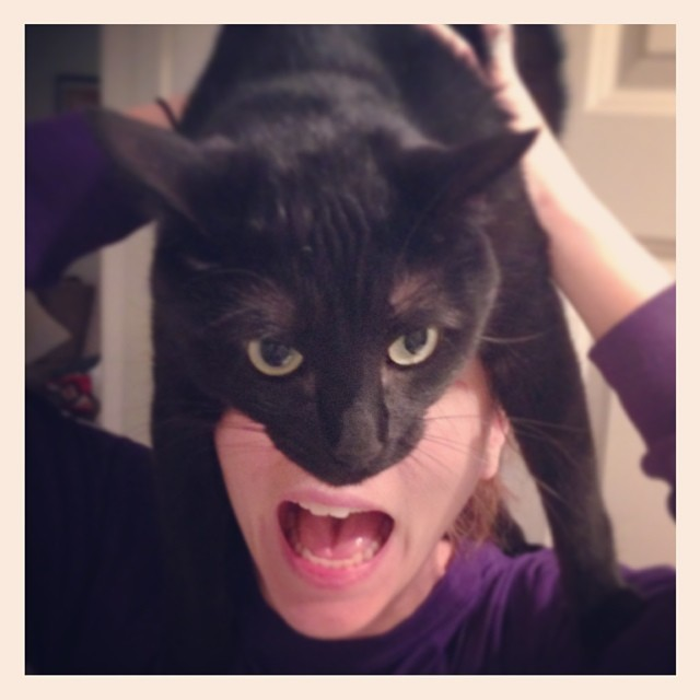 catman_02