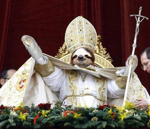 sloth1 (7)