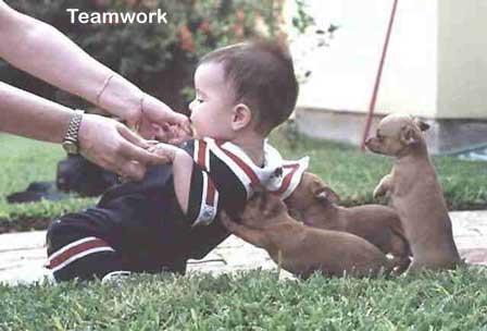 teambuilding (2)
