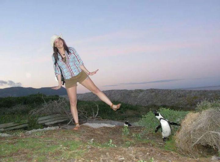 penguin (10)