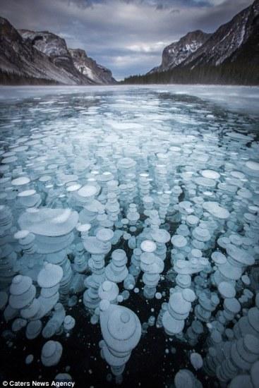 flozen_bubbles (6)