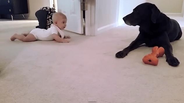 baby_kiss_dog2
