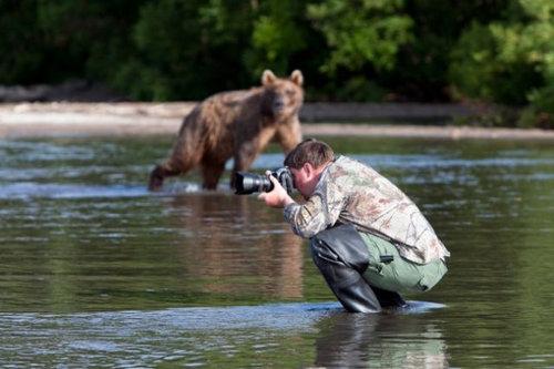 cameraman_animal (13)