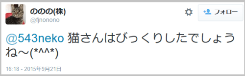 tanuki_cat6