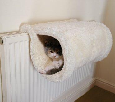 1107russian_cat7