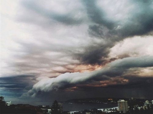 1113shelf_cloud_sydney7