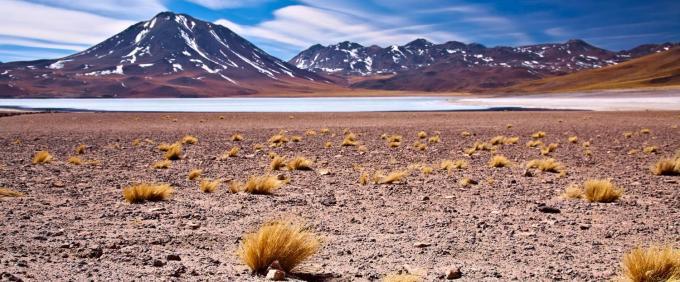 1115atacama_desert6