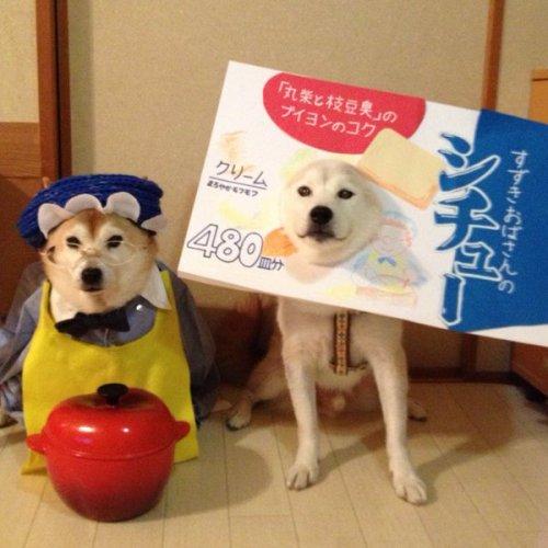 1204youkai_dog9