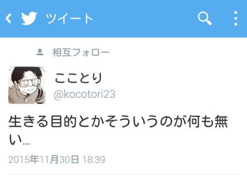 newlife_cat (1)