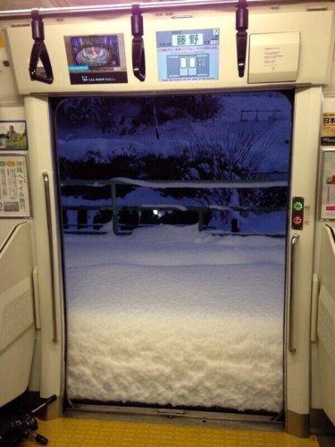 snow_tokyo (16)