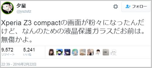 XPERIA_damage (1)