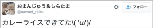 curry_neko40