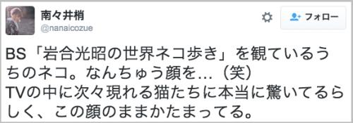 kugiduke_neko0