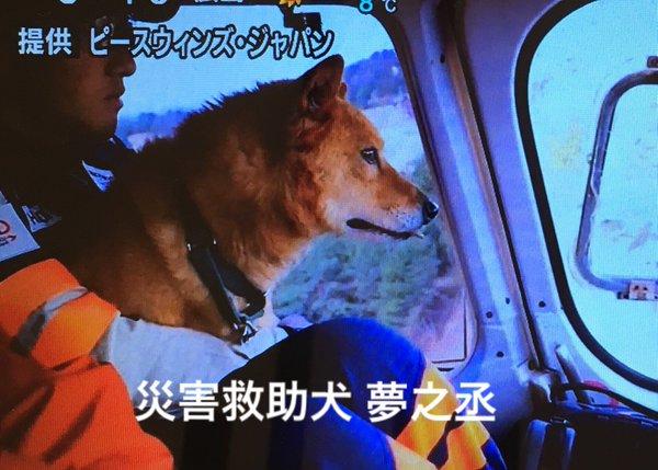 hisaichi_kyujoken14
