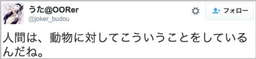human_animal4