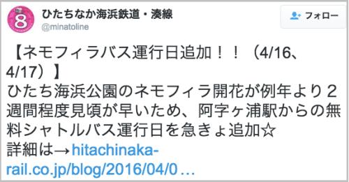 nemofira_hitachi12