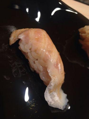 sushi_chiharu (3)