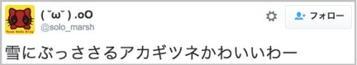akagitune_yuki8