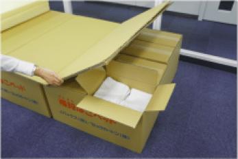 cardboard_bed1