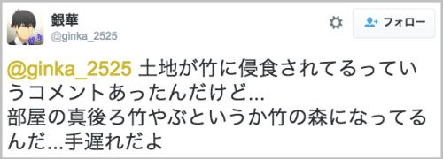 takenoko_situnai7