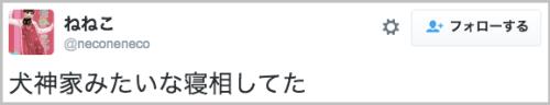 nekono_nezo14