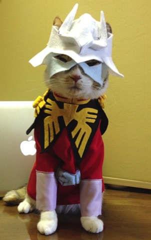 cat_costume-7