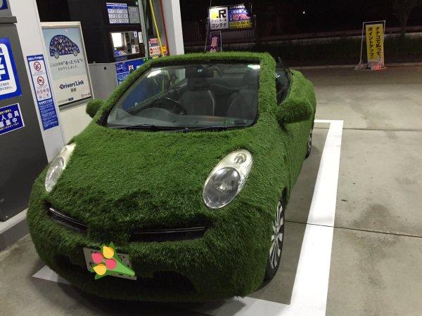 grasscar-9
