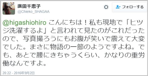 hitsujiwash (2)