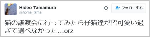 cat_jotokai-6