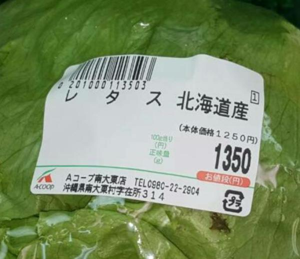 yasai_koutou-8