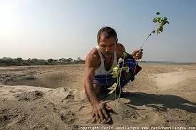 Jadav Payeng Forest man story in Hindi