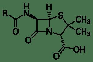 Penicillin ki sarachna