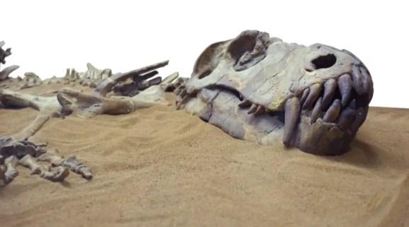 dinosaur discovery hindi, how dinosaur discovered, who discovered dinosaurs hindi, dinosaur ki khoj kisne ki, bone wars hindi, dinosaur ki khoj kese huyi, pahle konsa dinosaur khoja gaya,