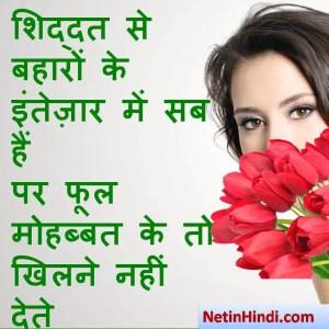 Love Shayari images dps, Love Shayari dp for whatsapp शिद्दत से बहारों के इंतेज़ार में सब हैं  पर फूल मोहब्बत के तो खिलने नहीं देते