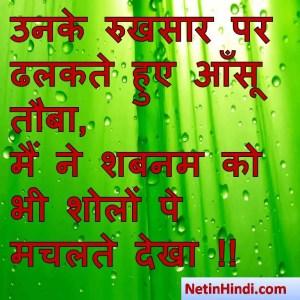 Shabnam status, Shabnam status picture, Shabnam status images, Shabnam status pics, Shabnam status photos उनके रुखसार पर ढलकते हुए आँसू तौबा,  मैं ने शबनम को भी शोलों पे मचलते देखा !!