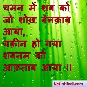 Shabnam status, Shabnam status picture, Shabnam status images, Shabnam status pics, Shabnam status photos चमन में शब को जो शोख़ बेनक़ाब आया,  यक़ीन हो गया शबनम को आफ़ताब आया !!
