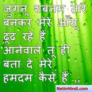 hindi Shabnam status, status in hindi for Shabnam जुगनू शबनम तारें बनकर मेरे आँसू ढूंढ रहे हैं  आनेवाले तू ही बता दे मेरे हमदम कैसे हैं ,,
