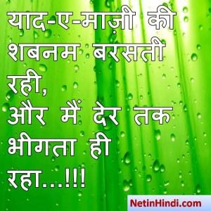 hindi Shabnam status, status in hindi for Shabnam याद-ए-माज़ी की शबनम बरसती रही,  और मैं देर तक भीगता ही रहा...!!!