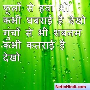 hindi Shabnam status, status in hindi for Shabnam फूलों से हवा भी कभी घबराई है देखो  गुंचों से भी शबनम कभी कतराई है देखो