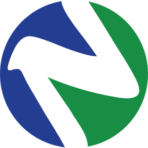 NETIS-site-logo-favicon
