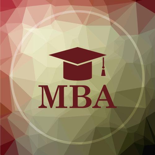 Mini MBA Netlan
