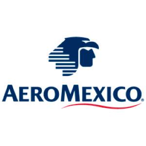 Aeroméxico, Cliente Netlan