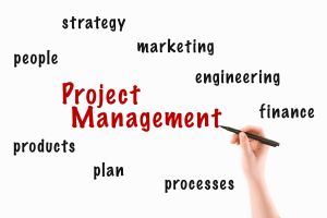 Project Management Duties