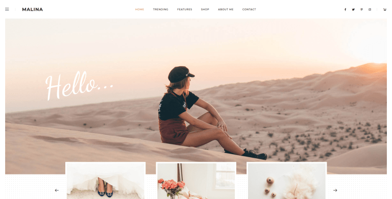 malina personal wordpress theme